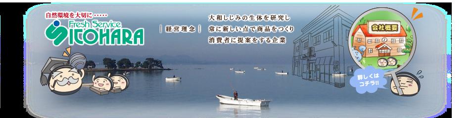 H280627_info_Company